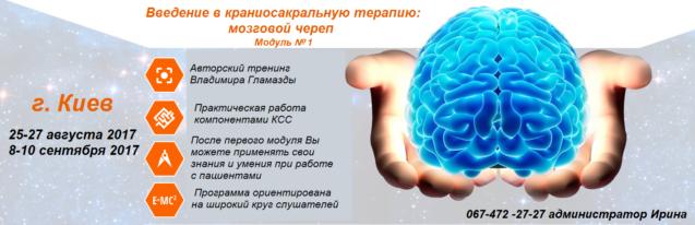 Авторский тренинг Владимира Гламазды — Введение в краниосакральную терапию: мозговой череп.