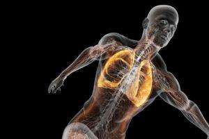 Легкие и скелетно-мышечные нарушения
