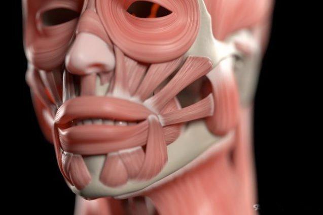Аэробика для лицевых мышц