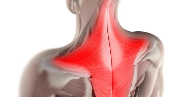 Психосоматическое напряжение и его влияние на тонус мышц