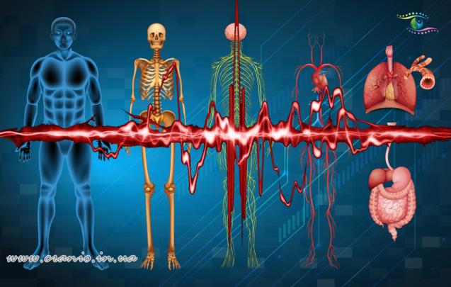 Методы остеопатии — как лечит пальпация