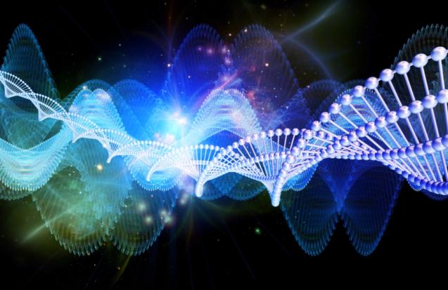 Что такое биодинамическая краниосакральная терапия?