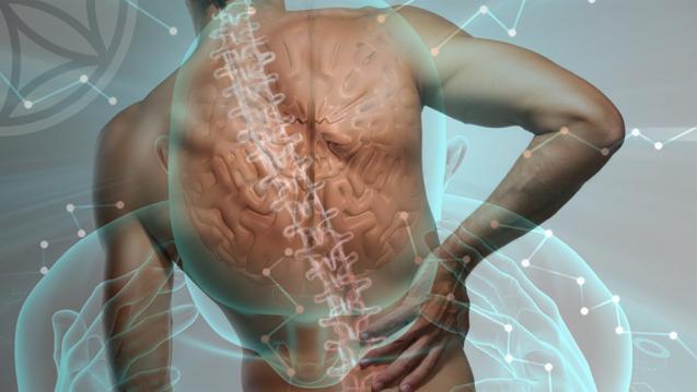 Краниосакральная терапия — точная диагностика организма