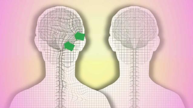Что такое краниосакральная терапия. Анатомическая основа КСТ