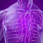 лимфатической системы в