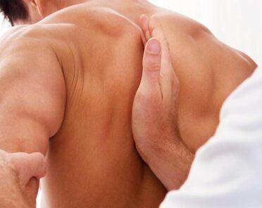 Краниосакральная остеопатия в разрезе краниосакральной системы и биодинамической остеопатии
